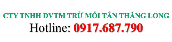 CTY TNHH TM TÂN THĂNG LONG